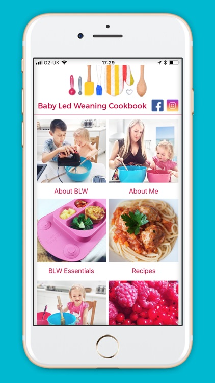 Baby Led Weaning Recipes screenshot-0