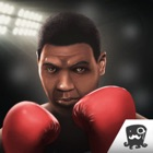 King Of Boxing Games icon