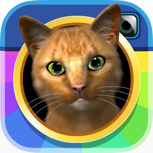 InstaKitty 3D - Виртуальный симулятор кота