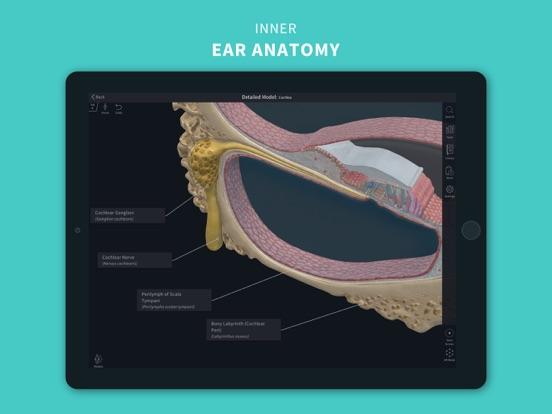 Complete Anatomy 2022のおすすめ画像6