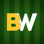 BW: Победа рядом на пк