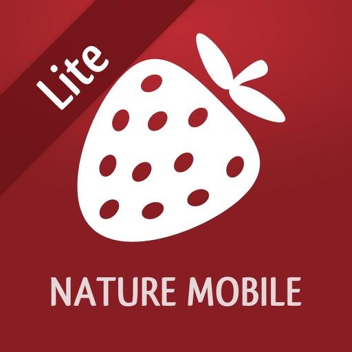 Wild Berries and Herbs LITE