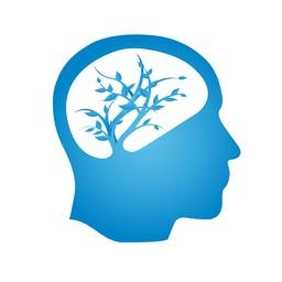 The Accomplished Brain App