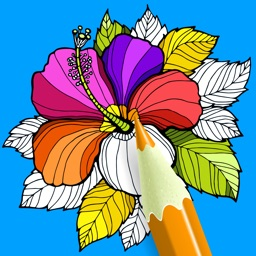 Coloring Book - Adult Color Book Therapy