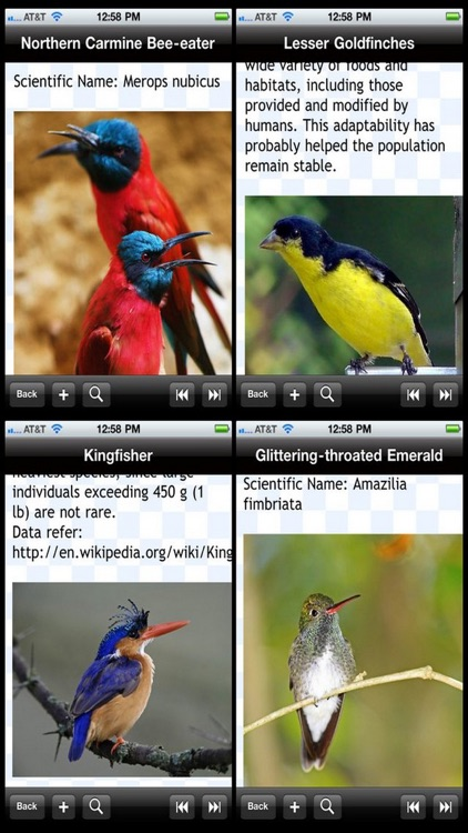 Birds Encyclopedia screenshot-1