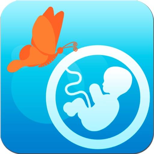 Kалендарь беременности