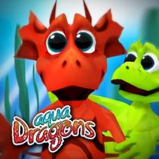 Activities of Aqua Dragons