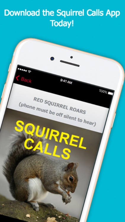 Squirrel Hunting Calls screenshot-3