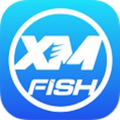 XM-FISH