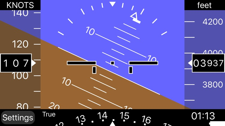 iBFD (integrated Backup Flight Display)