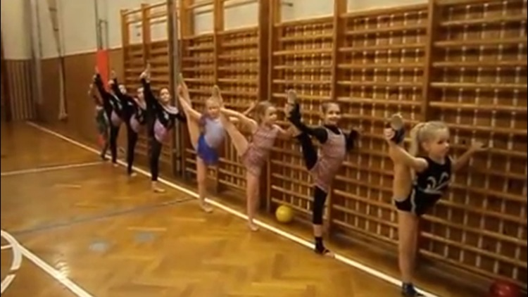 Gymnastics Class screenshot-2