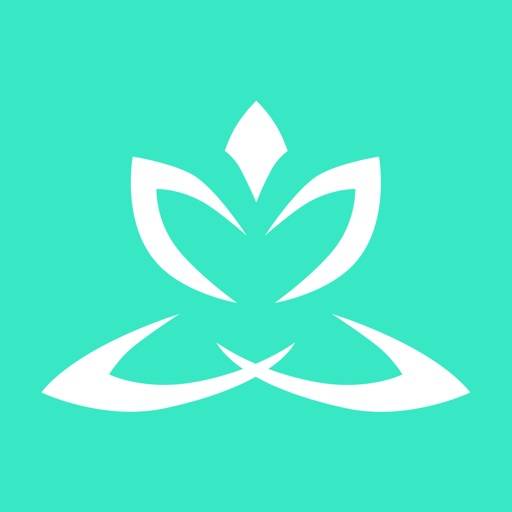 Zen Timer Pro-Insight for Relaxation & Mindfulness
