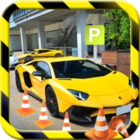Codes for Luxury City Car Parking Simulation Hack