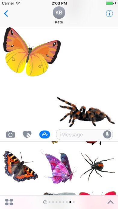 Insect Stickers Pack