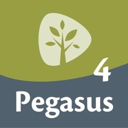 Pegasus 4 woordentrainer Latijn