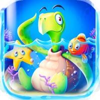 Codes for Turtle Blitz Hack
