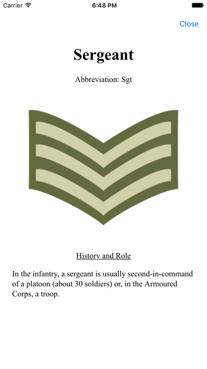Army Insignia screenshot-2