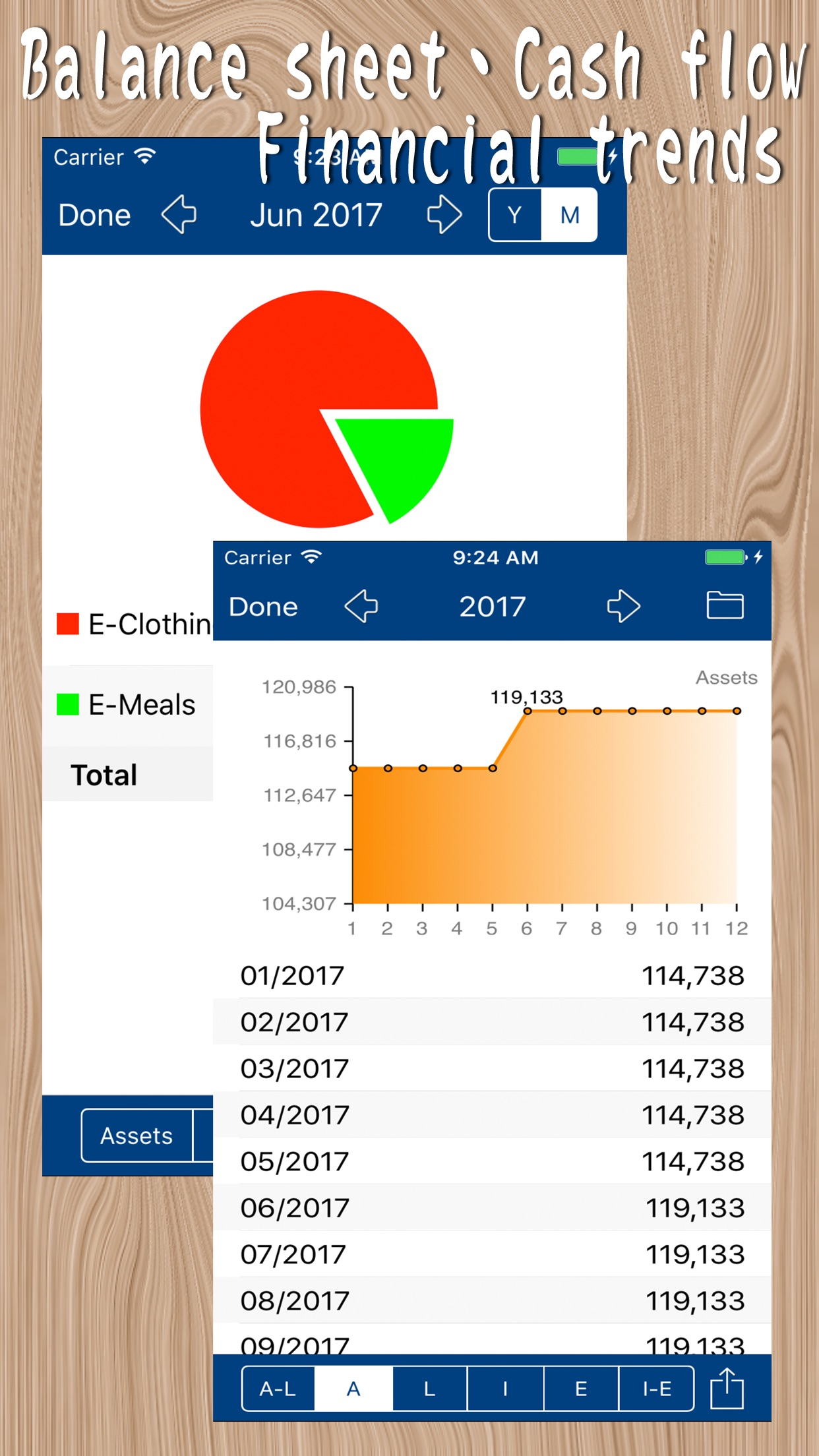 MyAsset - My Accounting Book Screenshot