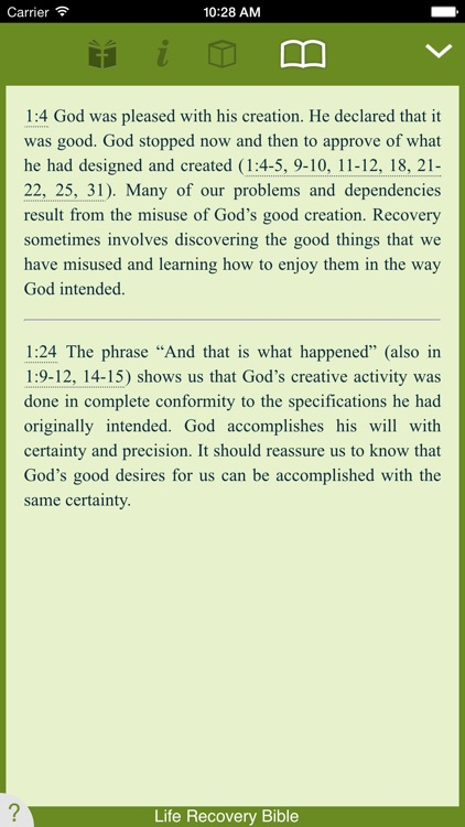 Life Recovery Bible screenshot-3