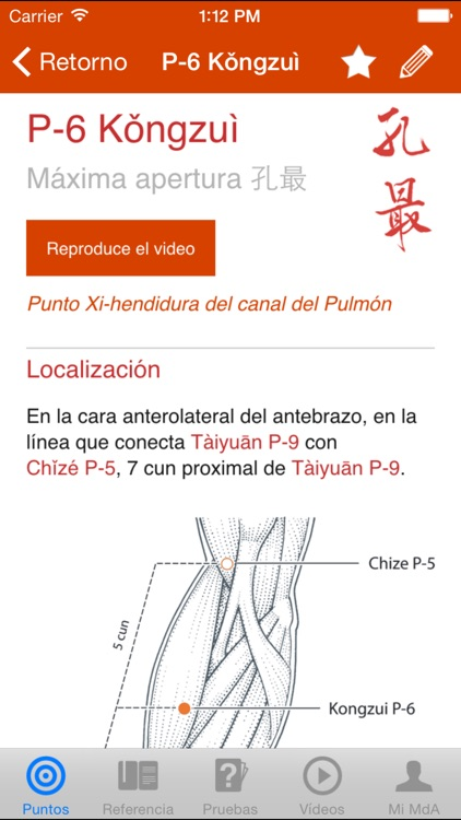 Un Manual de Acupuntura (A Manual of Acupuncture)