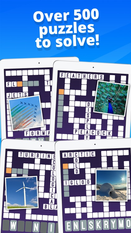 Crossword : One Clue Picture Crosswords screenshot-4