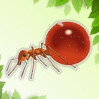 Ant Coloring Page Drawings Book for kids icon