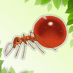 Ant Coloring Page Drawings Book for kids