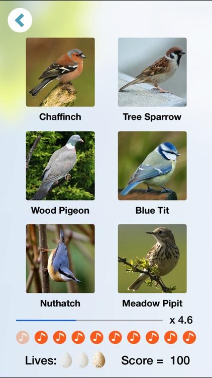 Chirp! Bird Songs & Calls of Britain and Europe + screenshot-3