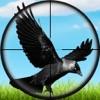 点击获取Real Jungle Birds Hunting