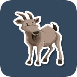 Fun Cute Animal Stickers