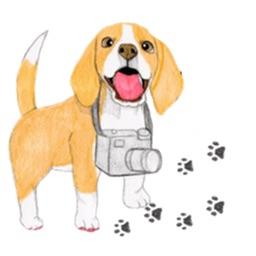 Travel of Beagle Dog Sticker