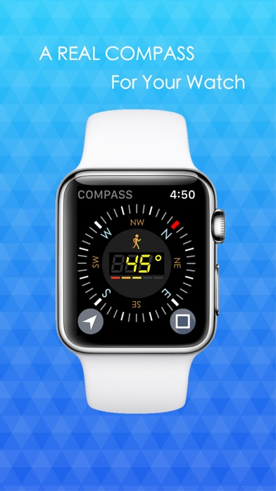 A Real COMPASS For Watch 2 Screenshot 1