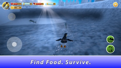 Penguin Family Simulator screenshot 3