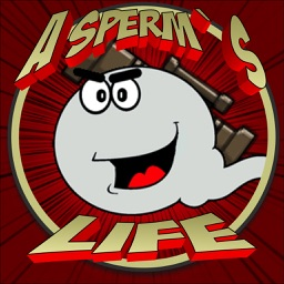 A Sperm's Life: A quest to fertilize an egg