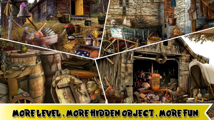 Search and Find Hidden Objects screenshot-3