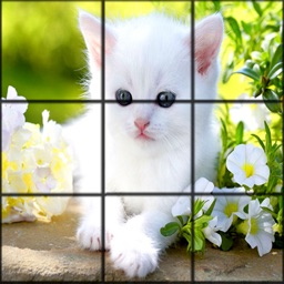 CATS:Picture Puzzle Stars