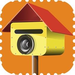 Picture Postie - photo prints, books & more!