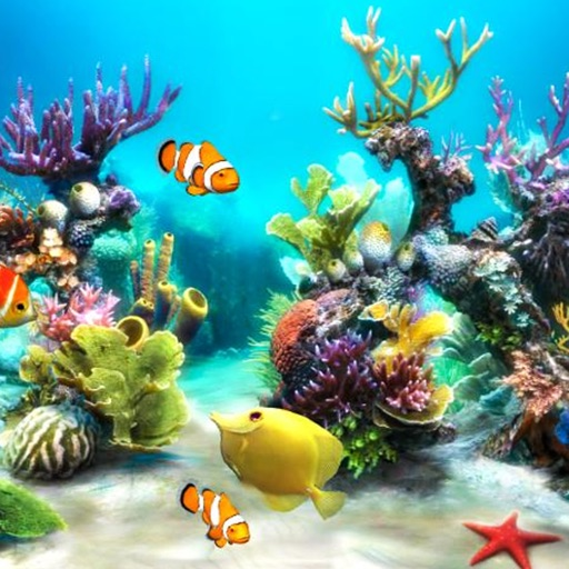 Aquarium Wallpapers | Backgrounds