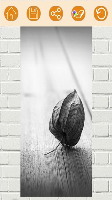 Efectos de color – blanco y negro foto editorCaptura de pantalla de4