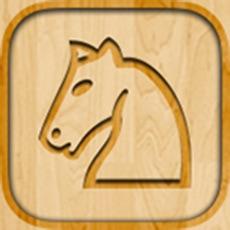 Activities of ChessEssentials
