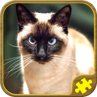 Codes for Cat Jigsaw Puzzles Hack