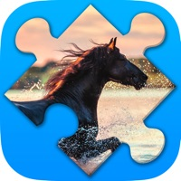 Codes for Horses jigsaw puzzles for adults Hack