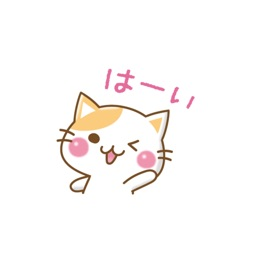 message nyanko stickers