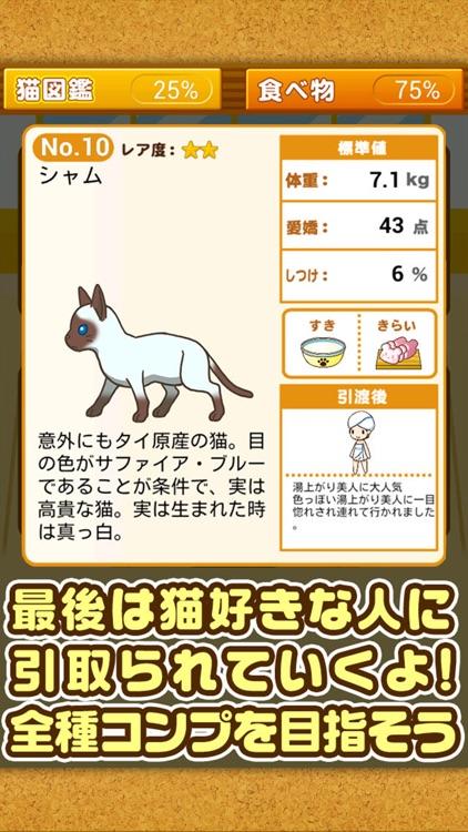 ねこカフェ~猫を育てる楽しい育成ゲーム~ screenshot-4