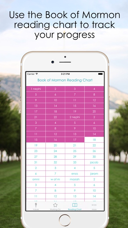 Personal Progress Binder screenshot-3
