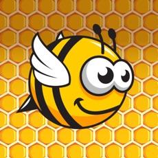 Activities of Up Down Bee
