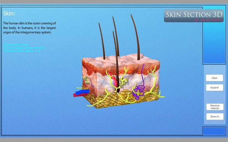 Skin Section 3D скриншот программы 5