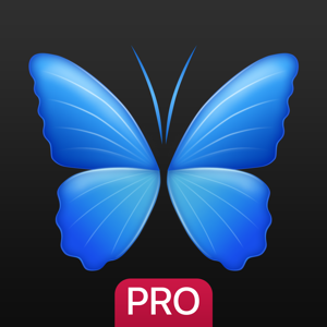 Everpix Pro - HD Wallpapers and Backgrounds app