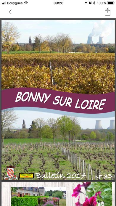Bonny sur Loire screenshot four