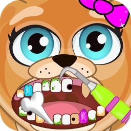 Celebrity Dentist Pets Doctor